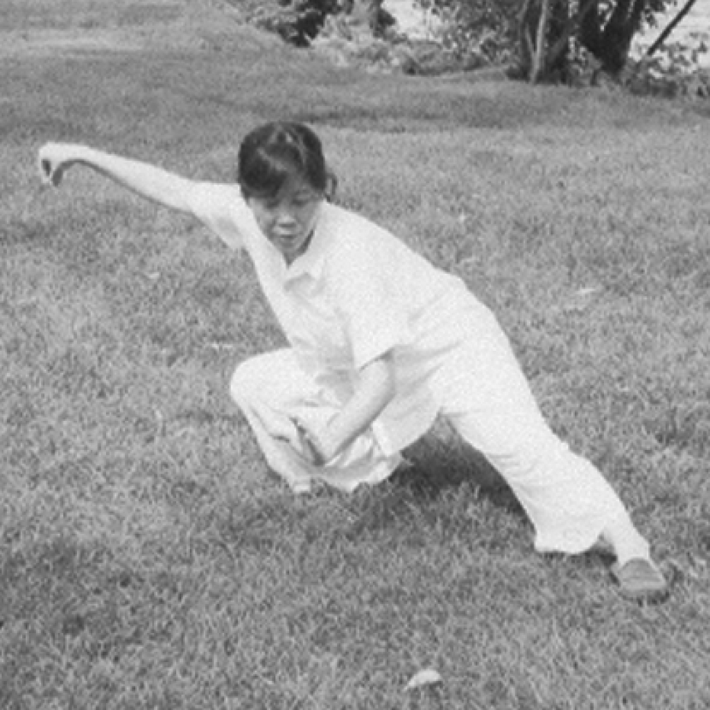 Master Grace Chui founder of Taichi Club Montreal performing  snake creeps down in very low position
